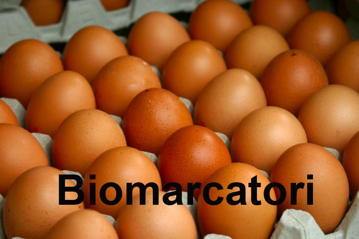 25_Biomarcatori_733