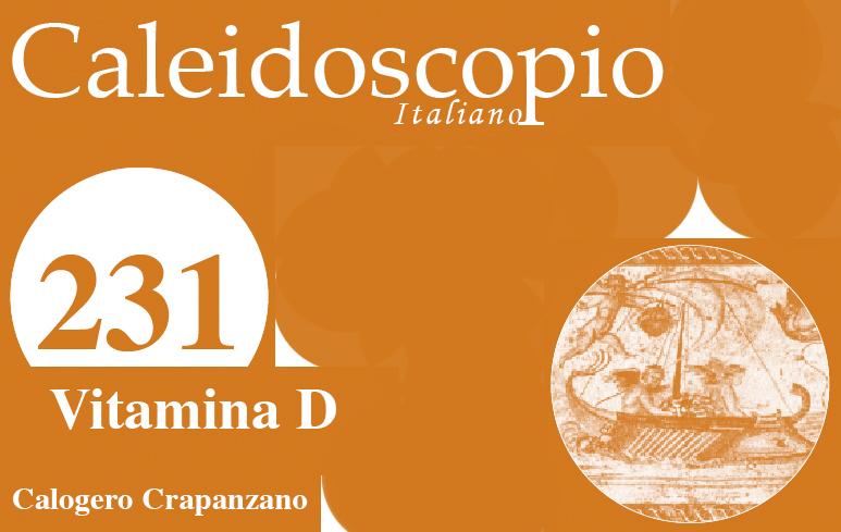 6_Caleido231