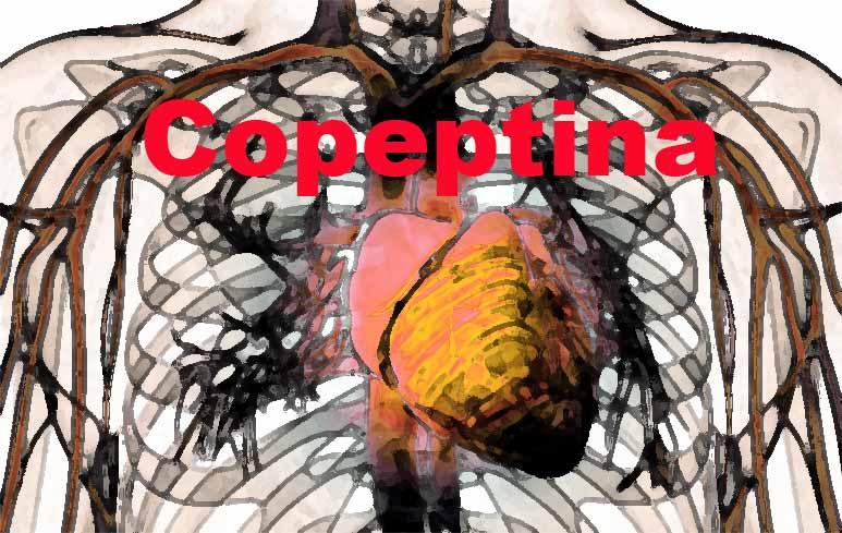 68_Copeptina