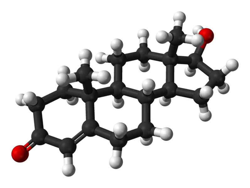 797px-Testosterone-from-xtal-3D-balls