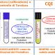 Figura per CQI Step by Step Versione Base