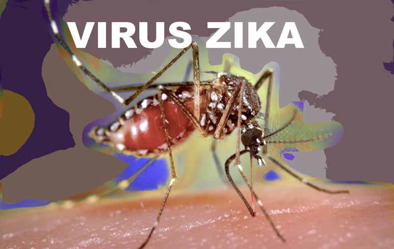 202_Virus Zika