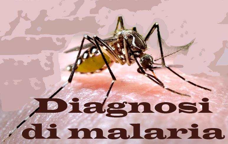 213_Diagnosi_Malaria