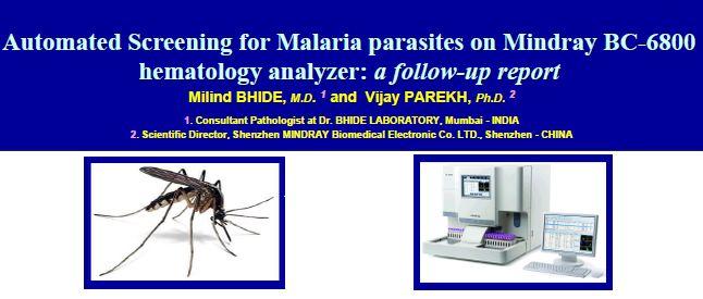 Immagine Poster Malaria