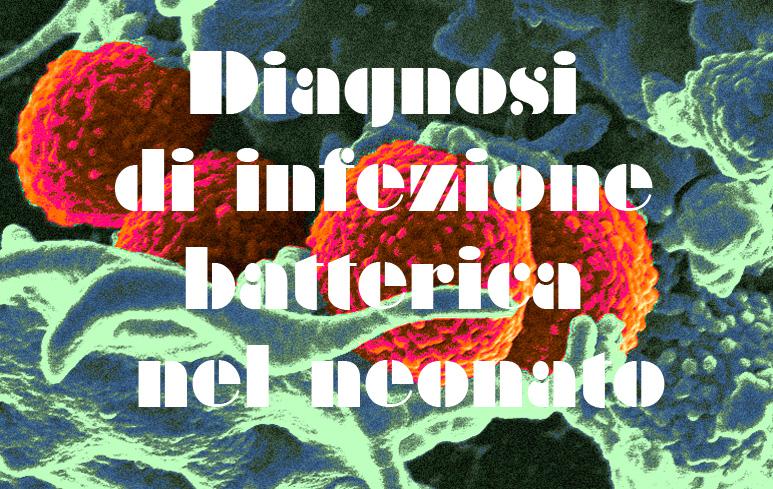 343_Infezione batterica