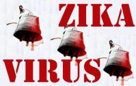 378_zika_sangue