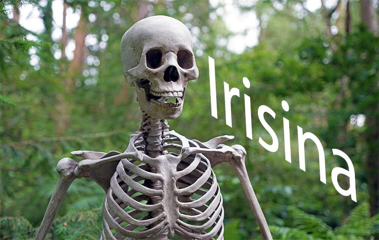 486_Irisina