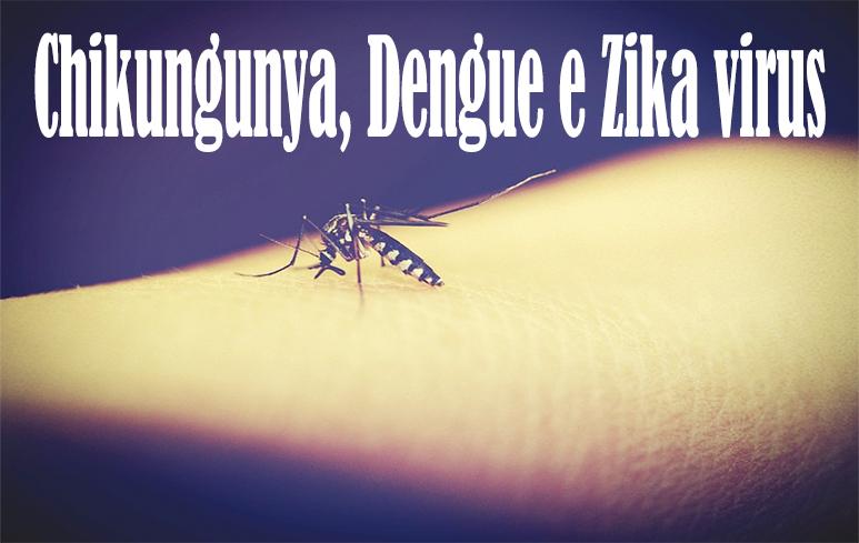 506_chikungunya, dengue e Zika