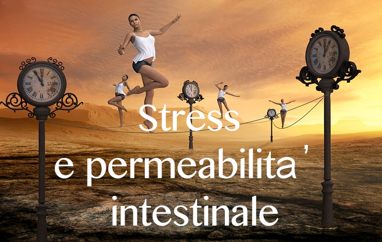 527_Stress e permeabilità intestino