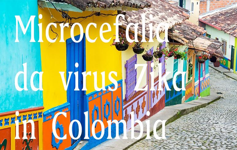 552_Virus Zika