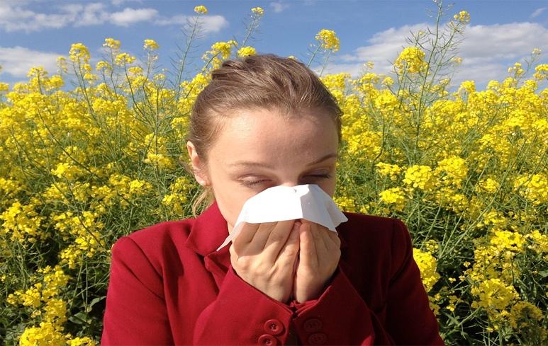 562_Allergia