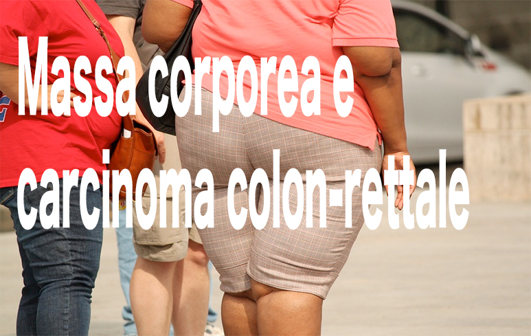 565_Massa corporea