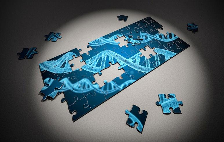 594_Genetica