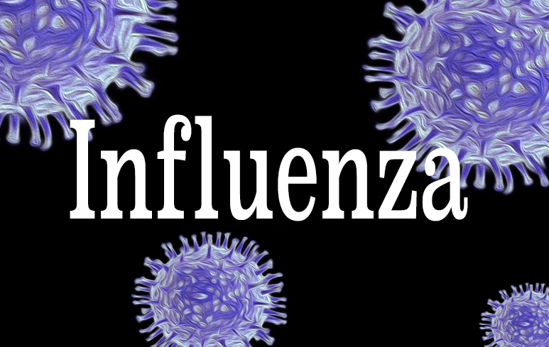 700_Influenza