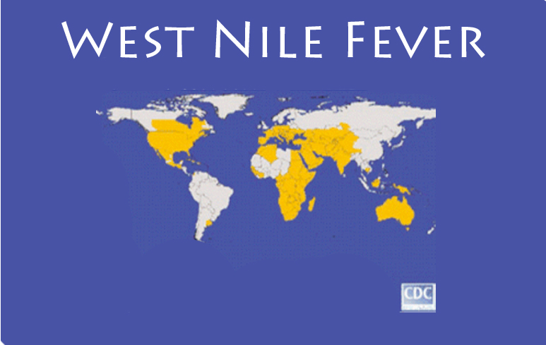 870_West Nile Fever