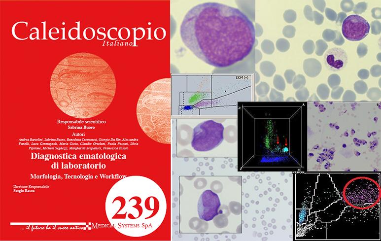 913_Caleidoscopio