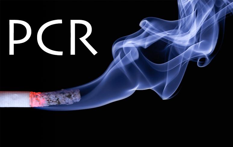 963_PCR Fumo