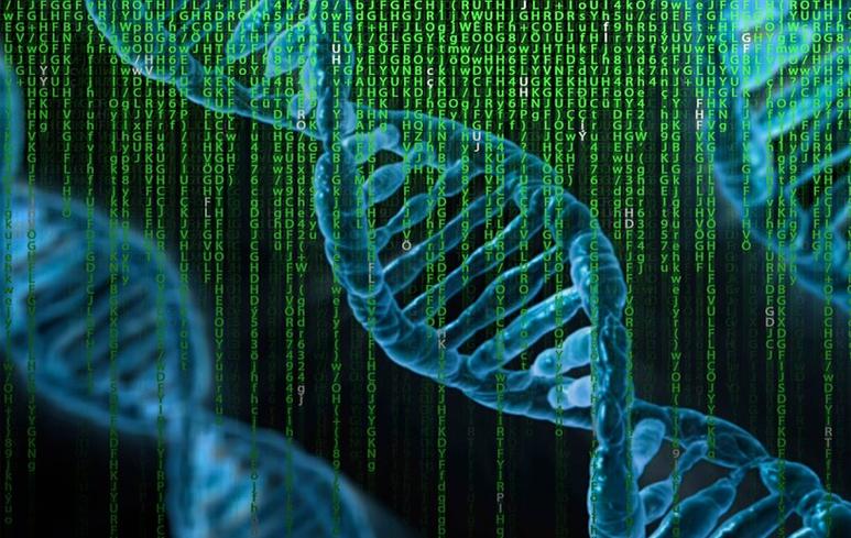 988_Genetica