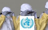 1064_Ebola