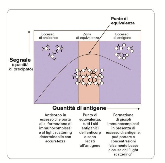 Antigen Excessitdtp2